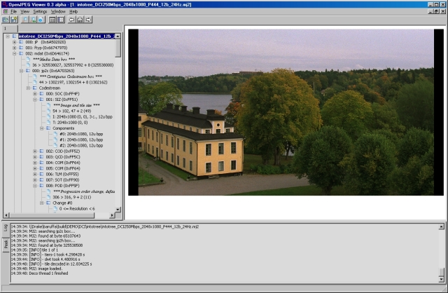 OPJViewer: OpenJPEG based JPEG 2000 viewer and codestream parser.